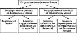 Организация государственных финансов на федеральном и региональном уровнях