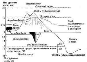 Биосфера